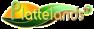 NTV – PlattelandsTV  NV